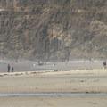 Oceanside, Oregon.- Oceanside + Three Arch Rocks National Wildlife Refuge