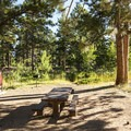 Typical campsite at Olive Ridge Campground.- Olive Ridge Campground