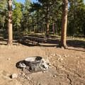 Typical campsite at Meeker Park Overflow Campground.- Meeker Park Overflow Campground