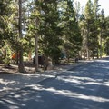 Longs Peak Campground.- Longs Peak Campground