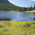 Lily lake.- Lily Lake Loop Hike