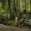 No Quarter crosses a few bridges.- Mount Fromme Mountain Bike Trails: No Quarter + Dreamweaver Loop