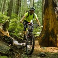 Dreamweaver has good technical sections and good flow.- Mount Fromme Mountain Bike Trails: No Quarter + Dreamweaver Loop