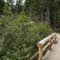 Bear Lake Loop Trail.- Bear Lake Loop Hike