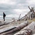 A makeshift driftwood shelter built by some creative beach goers.  - Iona Beach
