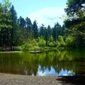 Cronemiller Lake, an excellent spot for a picnic.- Peavy Arboretum