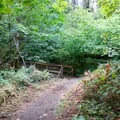 The Calloway Creek Trail.- Peavy Arboretum