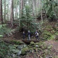 Crossing small bridges along the switchbacks.- Orcas Island: Cold Springs Trail to Mount Constitution Summit