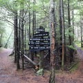 Trail options.- Orcas Island: Cold Springs Trail to Mount Constitution Summit