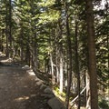 Trail just above the turnoff for Dream and Emerald Lake.- Lake Haiyaha Hike