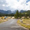 Group camping area at Glacier Basin Campground.- Glacier Basin Campground