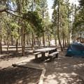 Typical campsite at Glacier Basin Campground, Loop B.- Glacier Basin Campground