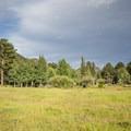 Hondius Park just outside of Aspenglen Campground.- Aspenglen Campground