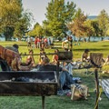 Barbecue in the park.- Spanish Banks Beach