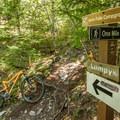 Nairn Falls Junction.- One Mile Lake Mountain Bike Trails: Lumpy's Epic