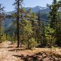 Top of the climb.- One Mile Lake Mountain Bike Trails: Lumpy's Epic