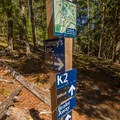 Several other trails intersect with Lumpy's along the way.- One Mile Lake Mountain Bike Trails: Lumpy's Epic