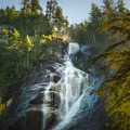 The falls are surrounded by thick forest.- Shannon Falls Provincial Park