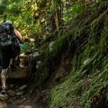 The upper Shannon Falls Trail.- Shannon Falls Provincial Park