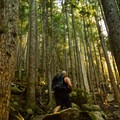 The trail gets steeper and steeper near the top of the upper falls trail.- Shannon Falls Provincial Park