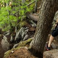 Some very steep scrambling in sections of the trail.- Shannon Falls Provincial Park