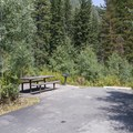 A typical tent site in Spruces Campground.- Spruces Campground