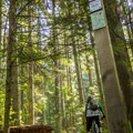 Starting to climb salamander.- Mount Seymour Trails: Lower Mountain Loop