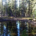 Between the Pacific Crest Trail junction and the Charlton Lake Trail is a picturesque little pond.- The Twins