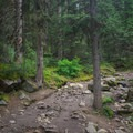 Part of the trail is a little rocky.- Lake Agnes + The Beehive Hike