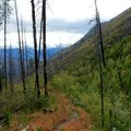 Fish Creek Trail to Moore Point.- Purple Pass Hiking Loop