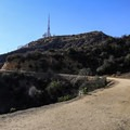 Initial views of the Hollywood Sign at the top of the trail.- Hollywood Sign via Hollyridge Trail