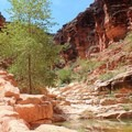 The area known as The Narrows.- Mooney + Beaver Falls Hike from Supai