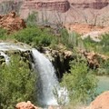Cliff jumping at Little Navajo Falls.- Mooney + Beaver Falls Hike from Supai