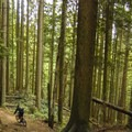 The Baden Powell has some flats sections.- Mount Fromme Trails: Expresso + Baden Powell