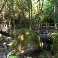 Footbridge across Fall Creek in the Umpqua National Forest.- Fall Creek Falls National Recreation Trail