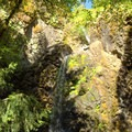 A sunny day in the Umpqua National Forest at Fall Creek Falls.- Fall Creek Falls National Recreation Trail