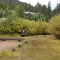 Typical site at Lincoln Creek Campground.- Lincoln Creek Campground