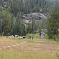 Lincoln Creek Campground in the White River National Forest is close to Aspen.- Lincoln Creek Campground