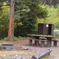 Typical site and bear box in Lincoln Creek Campground.- Lincoln Creek Campground