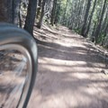 With a steady pace you can make short work of the uphill.- Bakers Tank Mountain Bike Ride
