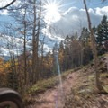 Riding the Bakers Tank Trail.- Bakers Tank Mountain Bike Ride