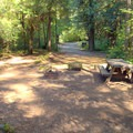 Typical campsite in Boulder Flat Campground.- Boulder Flat Campground
