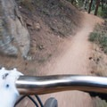 The trail is skinny and narrow in some spots.- Betasso Preserve Loop Mountain Bike Ride
