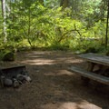 Typical campsite in Eagle Rock Campground.- Eagle Rock Campground
