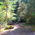 Campsite in Eagle Rock Campground that is tucked back into the trees.- Eagle Rock Campground