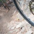 The A-line detour.- West Magnolia Mountain Bike Loop