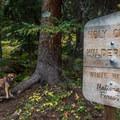 Entering the Holy Cross Wilderness.- Nolan Lake