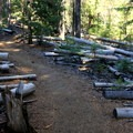 The trail to Lucky Lake is an easy walk through downed timber.- Lucky Lake Hike