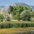 Walden Ponds Wildlife Habitat with Boulder's Flatirons in the distance.- Walden Ponds Wildlife Habitat