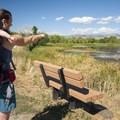 Walden Ponds Wildlife Habitat.- Walden Ponds Wildlife Habitat